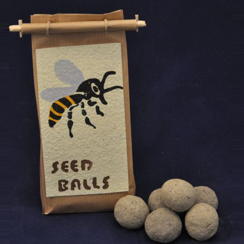Seedball Bienenparadies