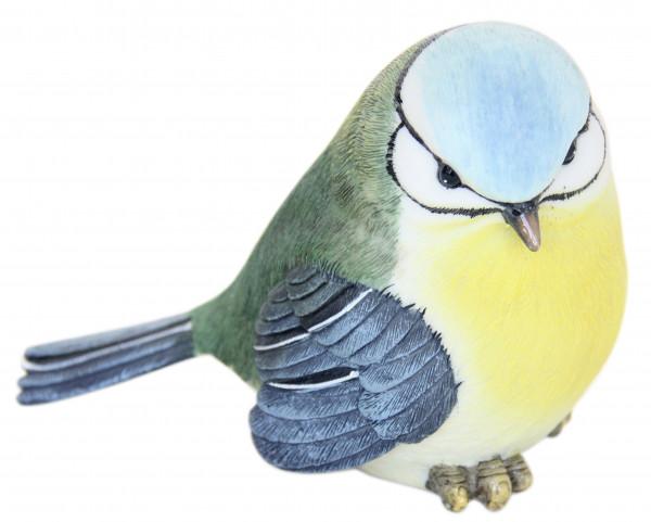 Vögelchen Victoria