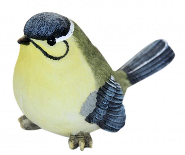 Vögelchen Bernhard