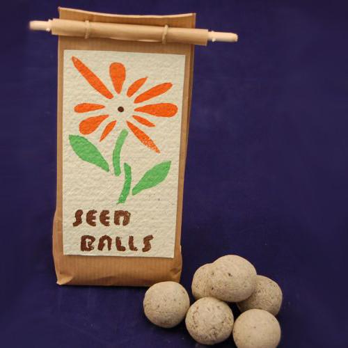 Seedballs Ruderalflora