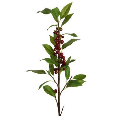 Floratexx Ilex mit Blätter