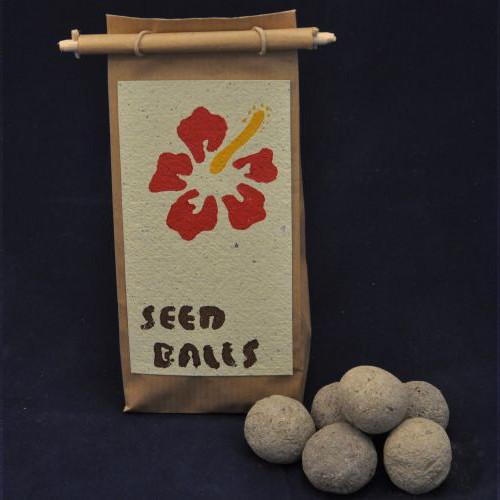 Seedball Essbare Blütenpracht