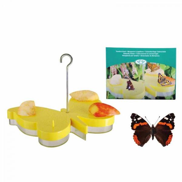 Schmetterlingstränke