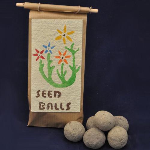 Seedballs Wildblumen