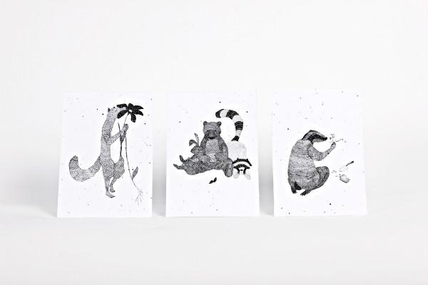 Seedpaper Nina Egli